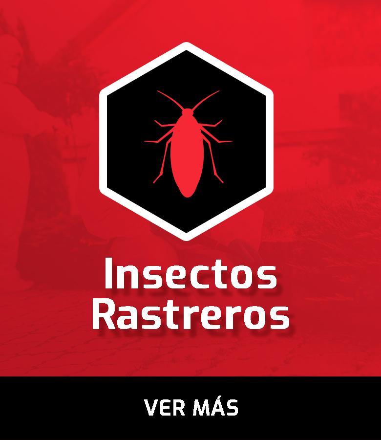 BANNERS CATEGORIAS PRODUCTO insectos rastreros HOVER BOX INICIO - copia